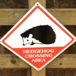 Crossing Hedgehogs 1